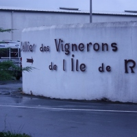 Wine cooperative on Ile de Re