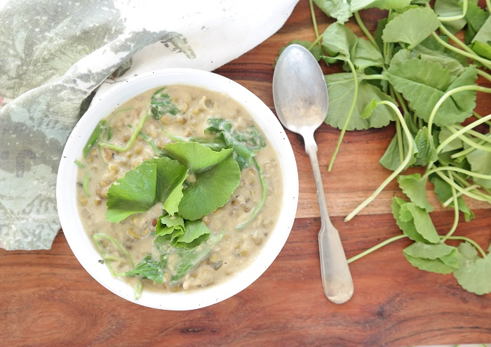 Mung bean and coconut stew